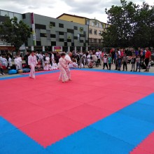 TU ŽIJEM : Festival kultúry a pohybu + AIKIDO BN 31.5.2019 Bánovce nad Bebravou.