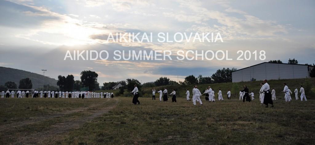 AIKIDO SUMMER SCHOOL 2018 23th annual international summer school of Aikikai Slovakia. SHIHAN MICHELE QUARANTA 6. DAN, 4-10.8.2018 TRENČÍN SLOVAKIA